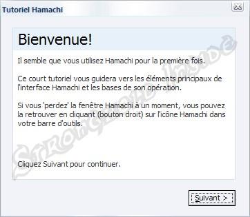 hamachi 1*