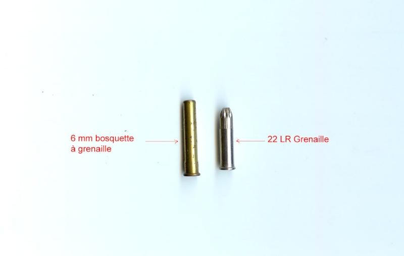 22lr pas de balle mais de la grenaille chasse passion for Pistolet 6mm bosquette