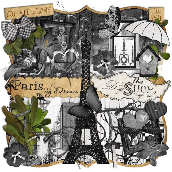 3 26 ctm enabling digishoptalk digital scrapbooking - Boutique scrapbooking paris ...