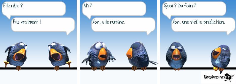 http://i80.servimg.com/u/f80/09/02/08/06/oiseau10.png