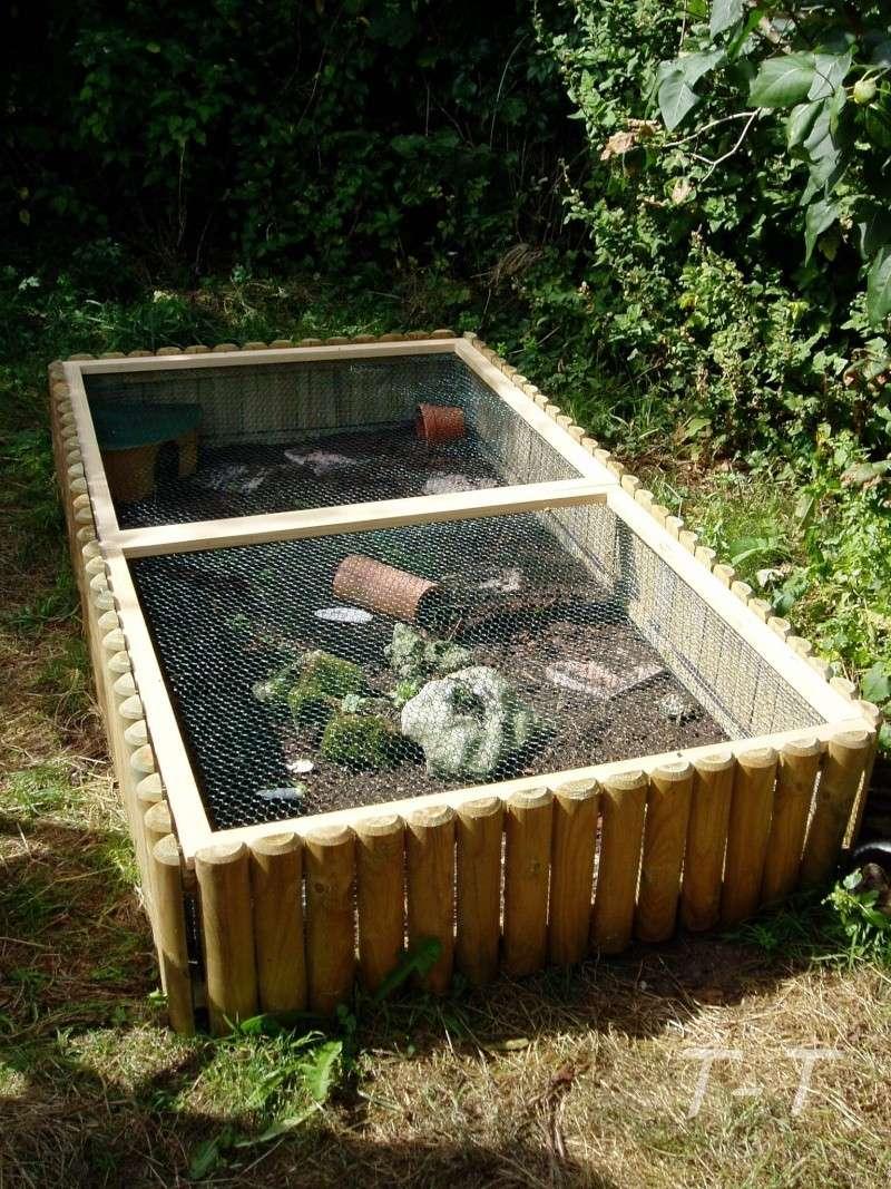 Parc pour b b tortue for Parc bebe exterieur