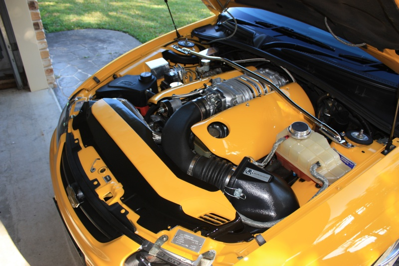 ls1 engine covers [Archive] - Australian LS1 and Holden Forums
