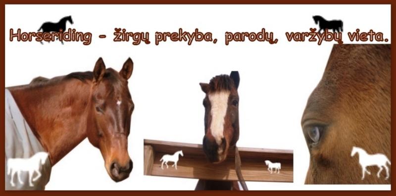 Horseriding- Žirgų pardavimas, parodos, varžybos.