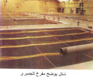 مشروع تربية جمبرى المياه العذبة