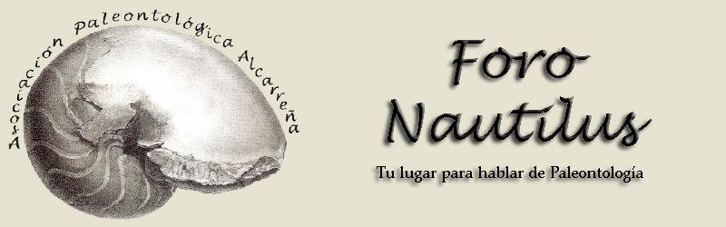 Foro Nautilus