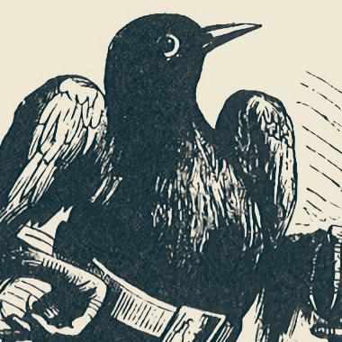 un oiseau noir en tenue de noble avec un air bête