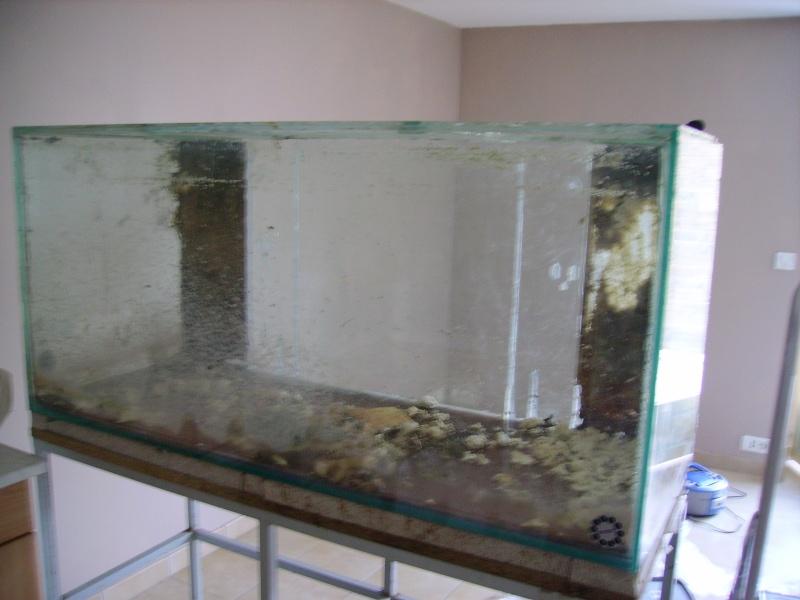 390l amazonien for Enlever silicone sur verre