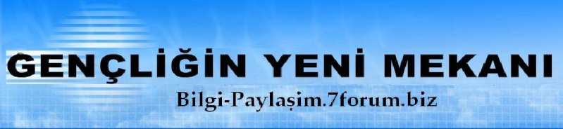 Bilgi-Paylasim