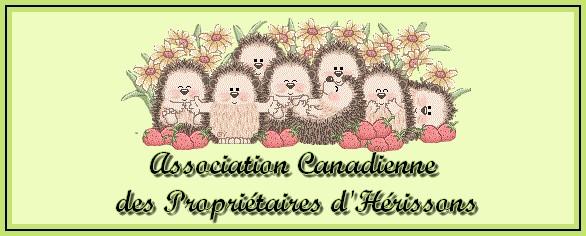 Association canadienne des propriétaires d'hérissons