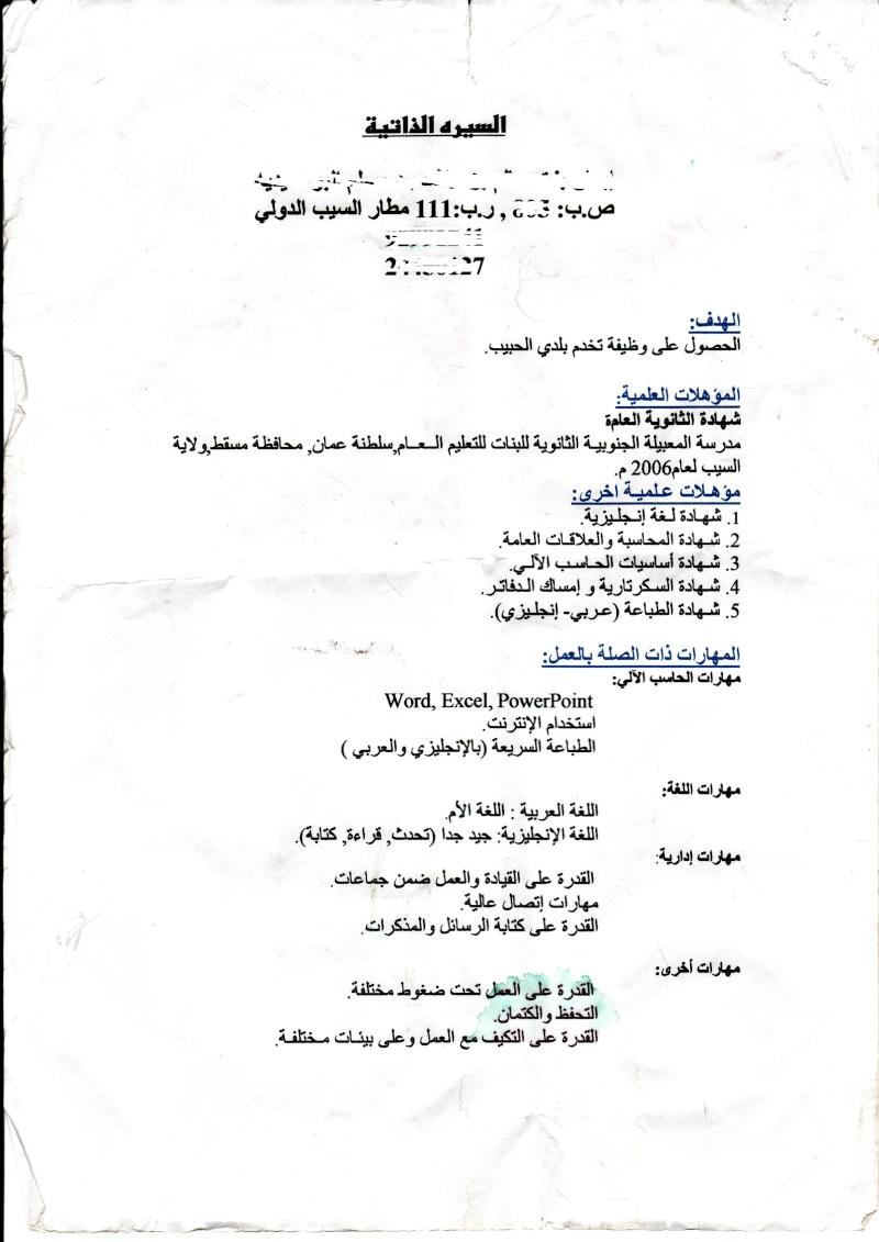 Professional CV in Arabic