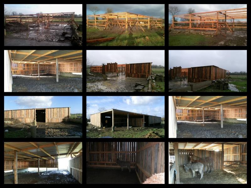 Construction d 39 un hangar abri chevaux moutons chevres - Cout construction hangar ...