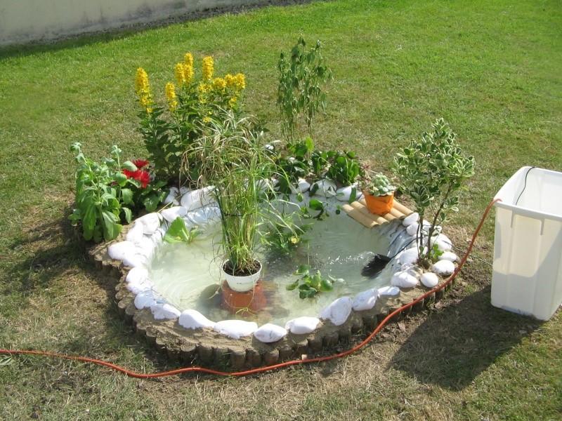 Mon petit bassin bassine for Petit bassin