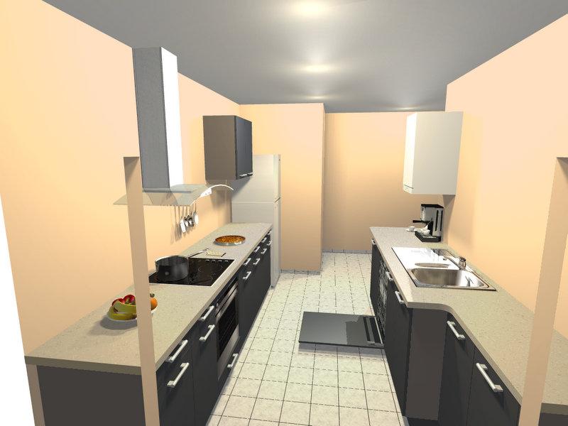 Cuisine en double ii ouverte salon salle manger for Cuisine en longueur moderne