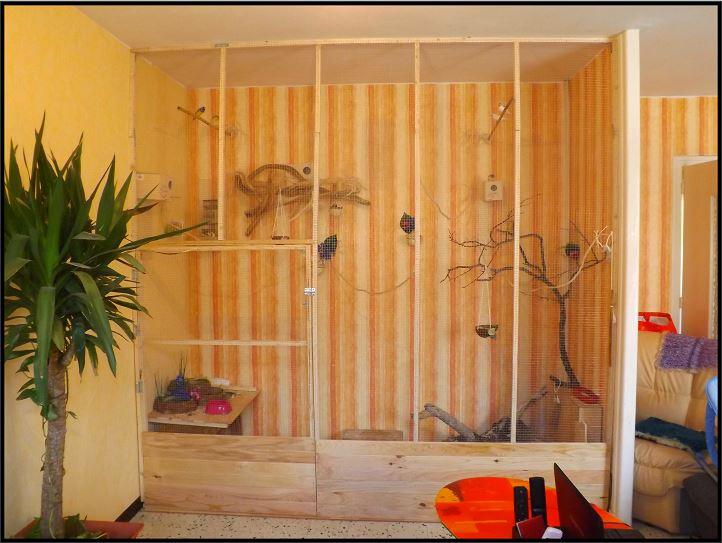 Dimensions cage fait maison pour 2 3 tourterelles - Voliere exterieur fait maison ...