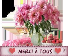 merci_15.png